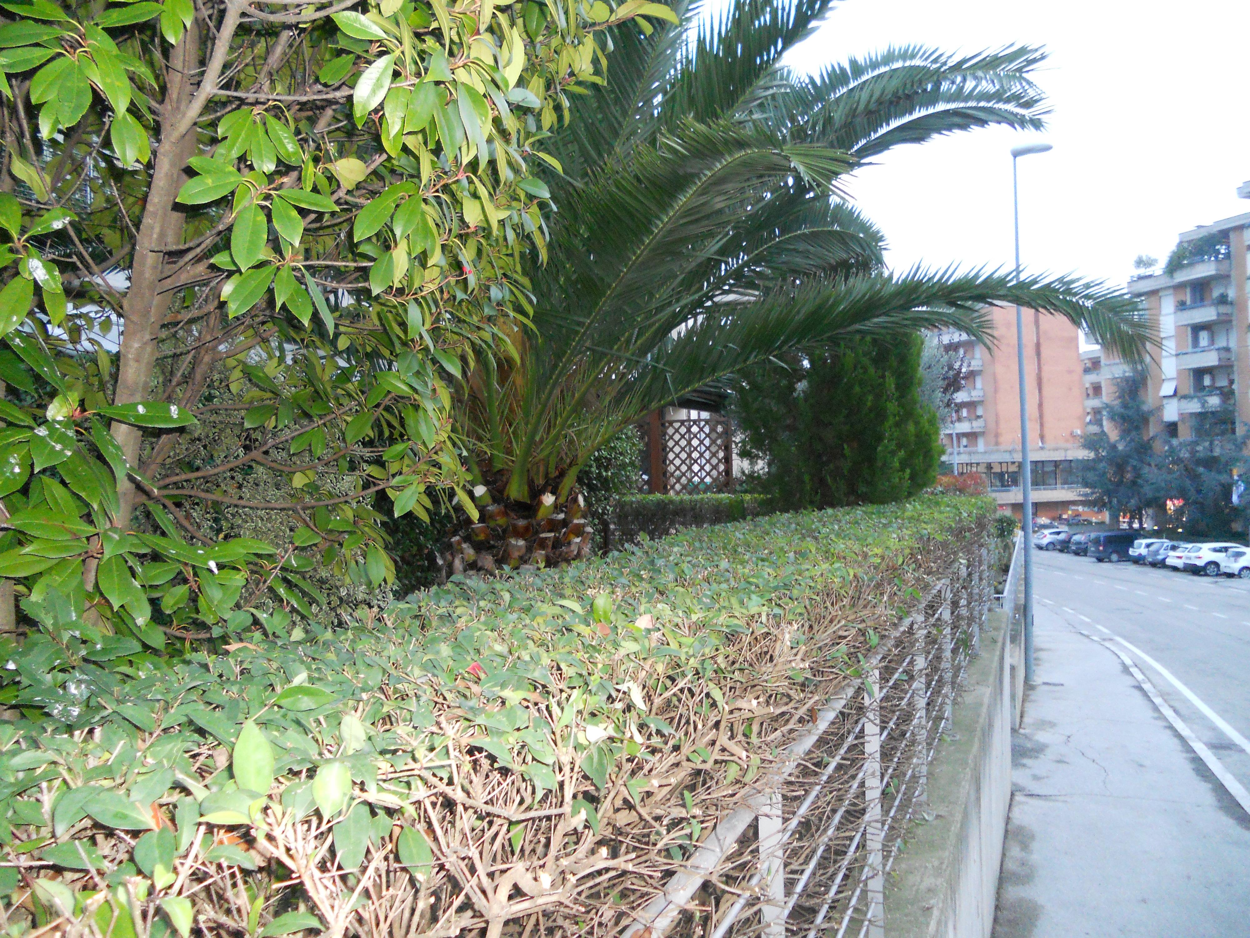 Lavori privati giardinaggio macerata giardiniere for Programmazione irrigazione giardino